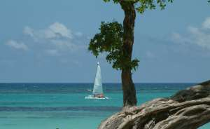 sailing-the-caribbean-1369166