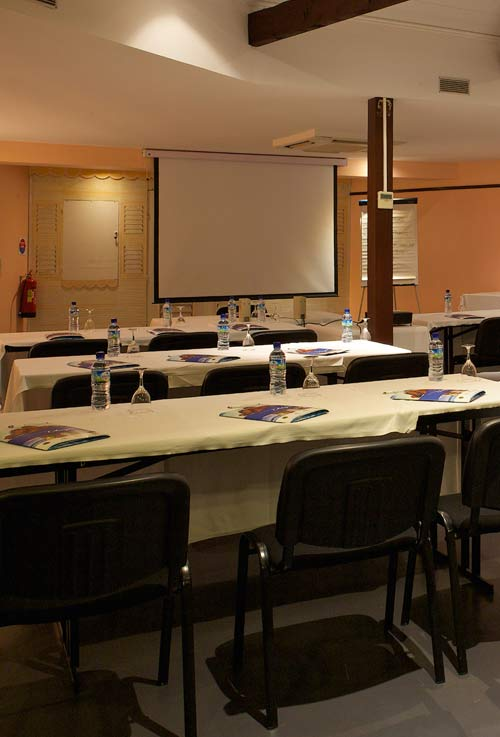 Your seminars and meetings at Hotel Bakoua, in la Pointe-du-Bout